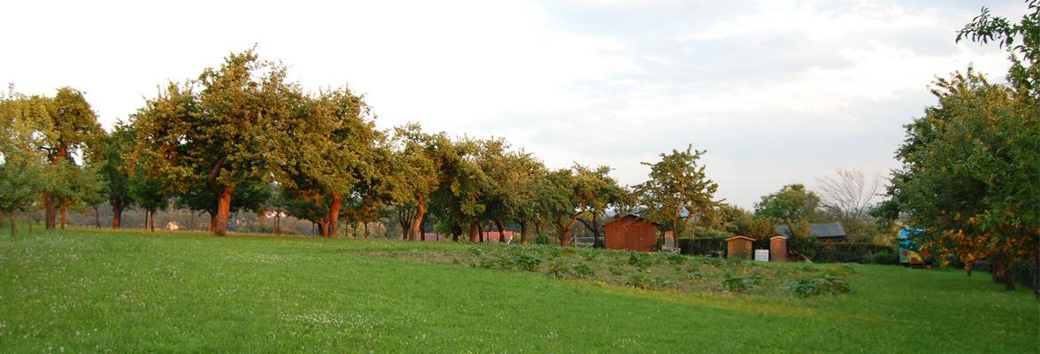 OGV Vereinsgarten